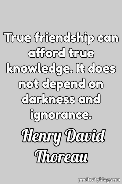 Friendship Quote by Henry David Thoreau