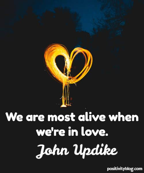 Love Quote by John Updike