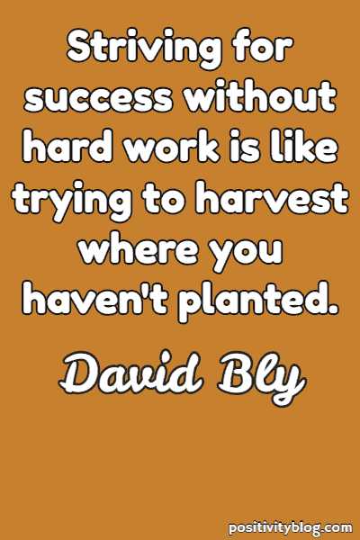 Success Quote by David Bly