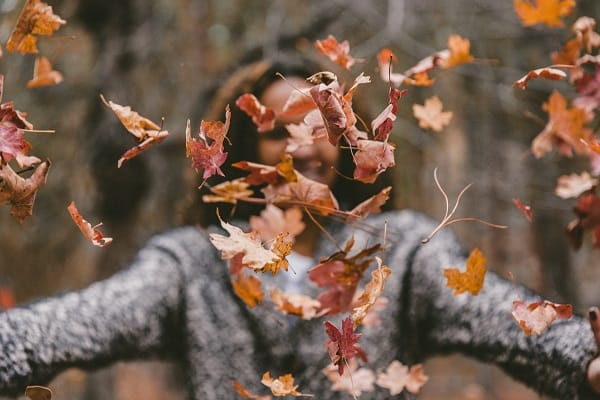 The Power of Thankfulness: 5 Essential Tips